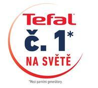 Tefal Express Compact parní generátor