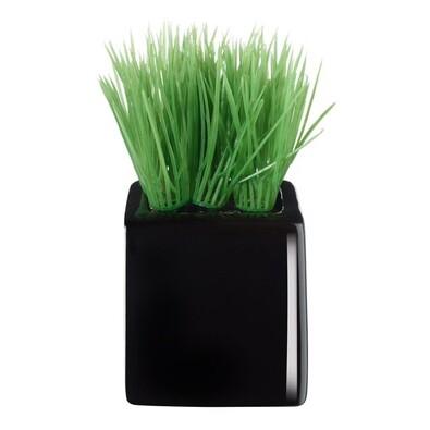 ASA Selection umělá květina v květináči mini grass 11752