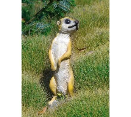 Dekorace na zahradu surikata