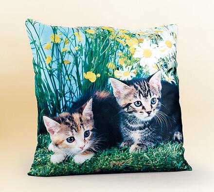 Povlak na polštářek koťata, 40 x 40 cm