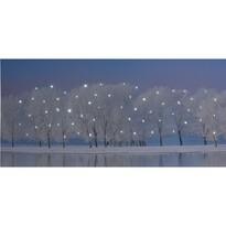 Tablou LED pe pânză Maella, 58 x 28 cm