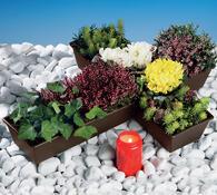 Plastový květináč na hrob