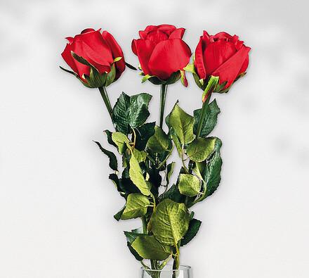 Umělé květiny červené růže, 3 ks, červená