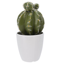 Umělý kaktus v květináči Tarimbaro, 15 cm
