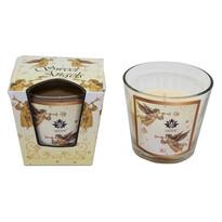 Arome Vonná svíčka Magical Winter, 120 g
