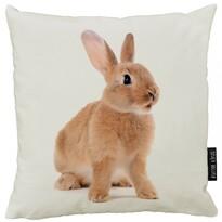 Butter Kings Polštář Rabbit, 50 x 50 cm