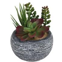 Koopman Yorito dekoratív pozsgás műnövények, 15 cm