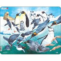 Puzzle Larsen Pinguini, 50 piese