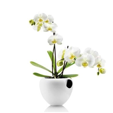 Samozavlažovací květináč 15 cm, bílý