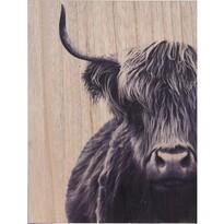 Obraz na dreve Bull, 28 x 38 cm