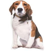 Beagle formázott párna, 50 cm