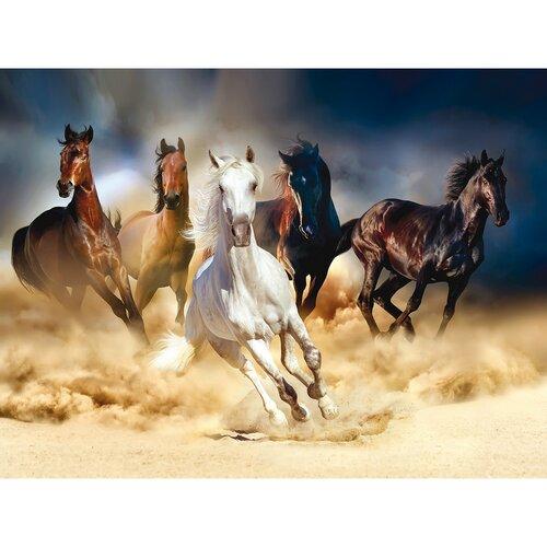Fototapeta XXL Horses 360 x 270 cm, 4 díly