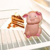 Orion Prasiatko do chladničky