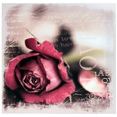 Obraz Růže