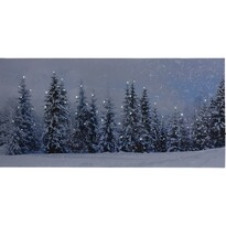 LED Obraz na plátne Atienza, 58 x 28 cm