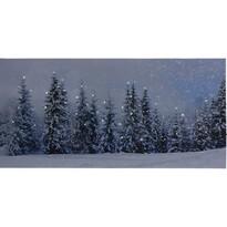 LED Obraz na płótnie Atienza, 58 x 28 cm