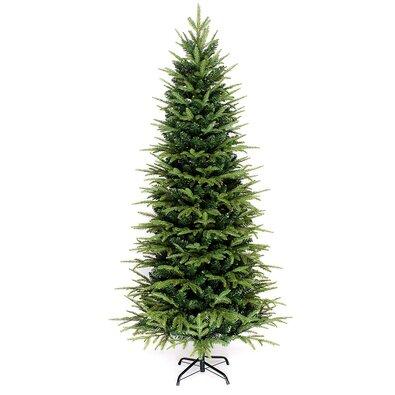 Vianočný stromček Smrek sivý, 150 cm