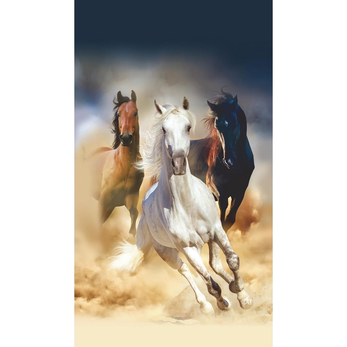 Tapeta fotograficzna pionowa Horses, 90 x 202 cm