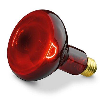 Beurer BEU-INFRA100W žiarovka pre infračervenúlampu