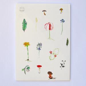 Dopisní set S houbami