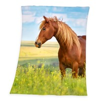 Deka Horse Freedom, 130 x 160 cm