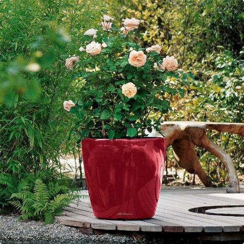 Lechuza Classico LS 28 plastový kvetináč samozavlažovací červená
