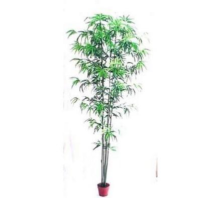 Strom bambus, 290 cm, zelená, 290 cm