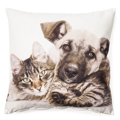 Povlak na polštářek Pes a kočka, 40 x 40 cm