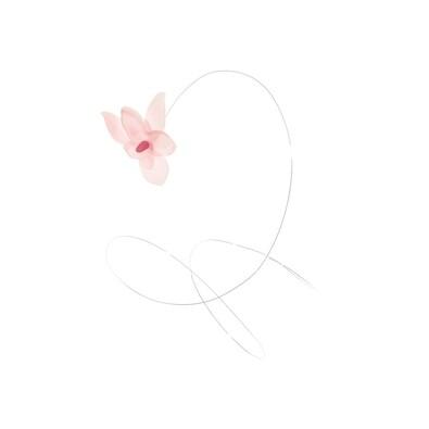 ASA Selection dekorace orchidej na drátku 12 ks růžová