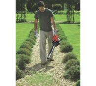 Elektrický zahradní vysavač Black and Decker GW301, červená
