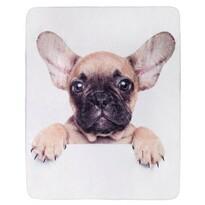Jerry Fabrics Puppy Bulldog mikroflanel takaró, 120 x 150 cm