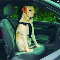 Beeztees Bezpečnostní postroj do auta, vel. M