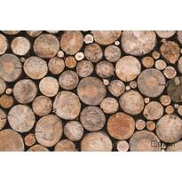 Domarex Wycieraczka LiveLaugh Wooden, 40 x 60 cm