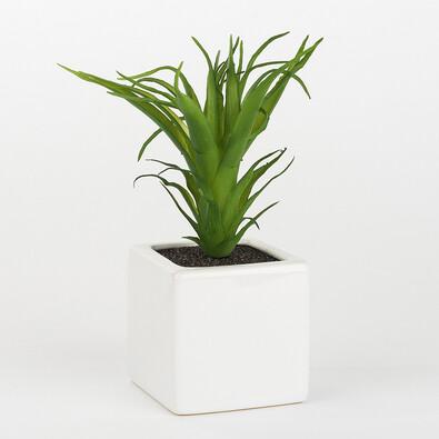 ASA Selection umělá květina succulents 11646