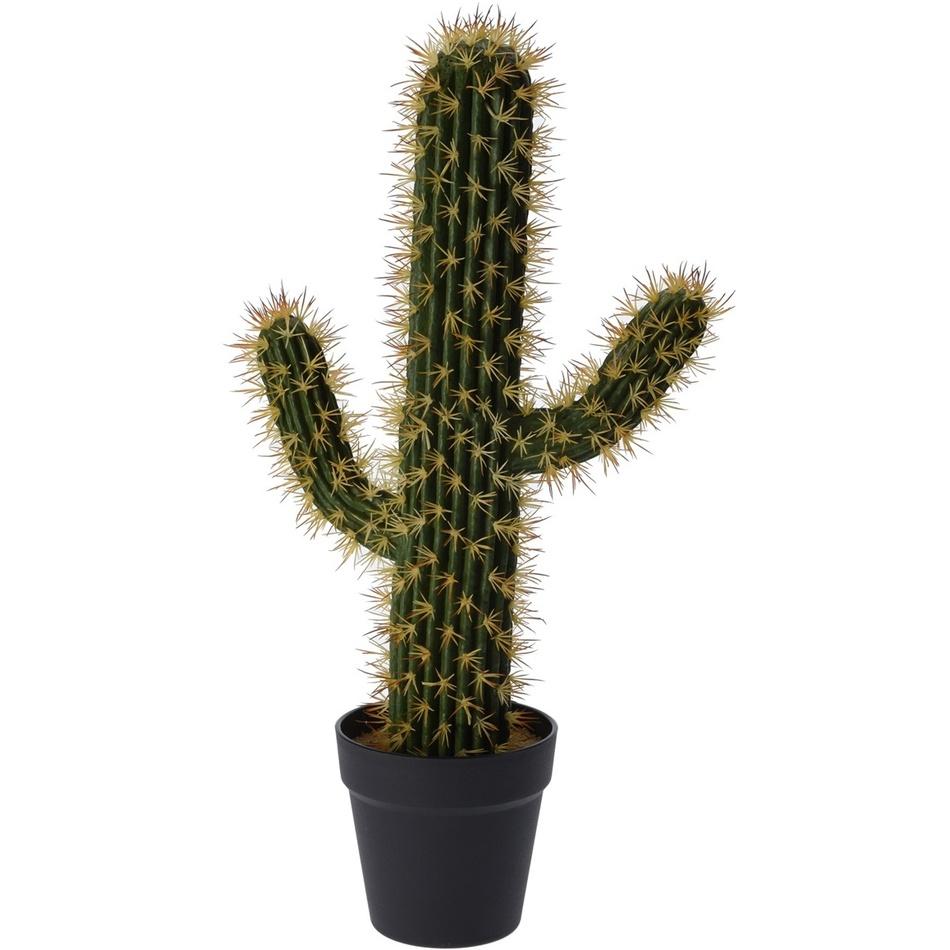 Koopman Umělý kaktus Safford, 14 cm