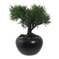 Bonsai artificial Cedru, în ghiveci, verde, 19 cm