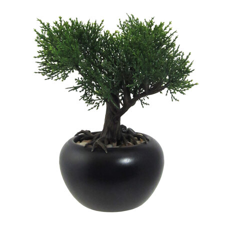 Umelý bonsaj Céder v kvetináči zelená, 19 cm