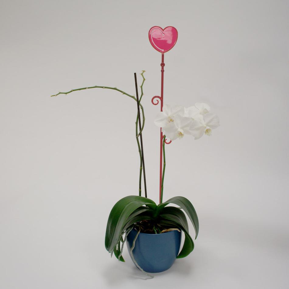 Tyčka k orchideji srdce, červená, 2 ks, Plastia