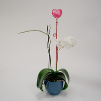 Plastia Orchidea pálca Szív piros, 60 cm