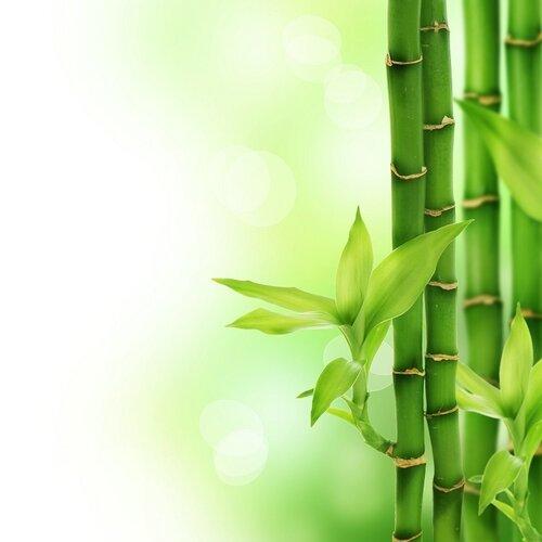 Matracová podložka Bamboo, 90 x 200 cm