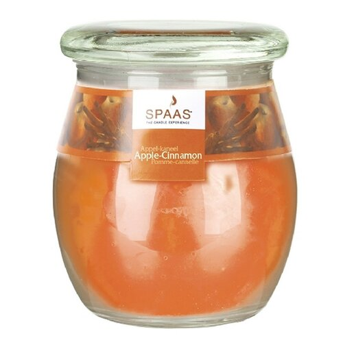 Spaas Apple/Cinnamon vonná svíčka ve skle