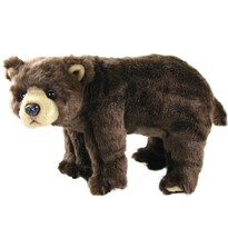 Koopman Pluszowy niedźwiedź brązowy, 40 cm