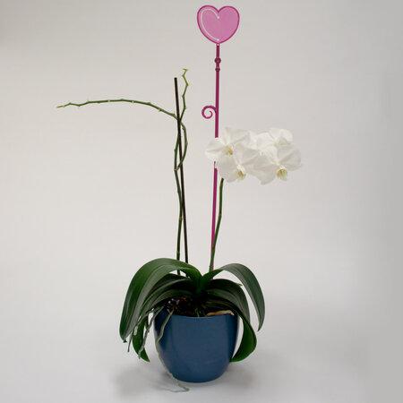 Plastia Orchidea pálca Szív lila, 60 cm