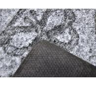 Vnitřní rohožka Kocourek, 40 x 60 cm
