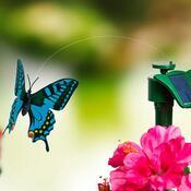 Solární létající motýl