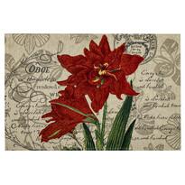 Prestieranie Ľalia červená, 32 x 48 cm