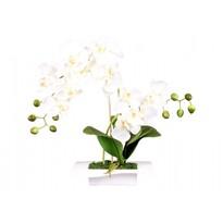Umělá orchidej v misce 14 květů, 45 cm, bílá
