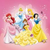 Polštářek Princess 2013, 40 x 40 cm, růžová