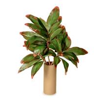 Umelá rastlina Dracena-cordyline,  45 cm