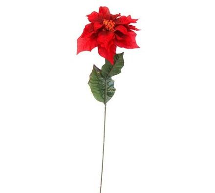 Vánoční hvězda POINSETTIA, červená